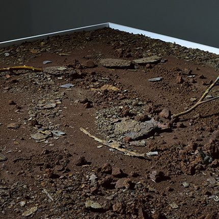 fallen leaves -corrosion- 「soil」2015年制作 鉄粉・鉄屑